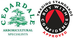 Cedardale Tree Surgeons Guildford Surrey