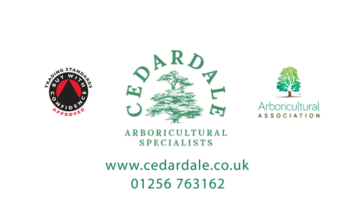 Cedardale Tree Surgeons
